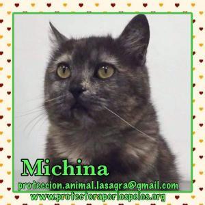 Michina