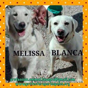 Blanca y Melisa